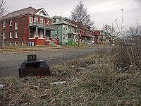 Detroit: downtown, il centro della città. Una strada di ville con di fronte una prato incolto con rifiuti abbandonati.