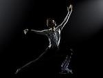 Harry Hau Yin Lee - Hong Kong Figure Skater 2014