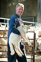 Ballycastle, Northern Ireland, United Kingdom, May 2011. Sheep farmer Patsy Mcbride. Watertop Farm is the hill farm of Patsy and Terry McBride.The name Watertop was chosen for the farm as a part of the Carey river rises as a fresh water spring nearby. The farm is a sheep farm, and keeps about 500 sheep, and 30 cows. In 1986 it opened to the public and became the first open farm in Ireland. Watertop farm is also a camping with caravan and tent sites with watrer and electricity. Famed in poetry, song, myth and magic there are nine Glens of Antrim, each endowed with an evocative name and each weaving its own special magic. Lush, green secret places with the sound of water alternately softly swirling, then falling in dramatic torrents, the nine Glens delight the senses.  Entwined with their rich beauties are equally diverse and magical stories, combining the colourful history, myth and the traditions of the communities within the glens. For decades travellers stayed away from the sectarian violence, but since the end of'The Troubles' more and more people start discoving the beauty of Belfast and the Antrim Coast Causeway. Photo by Frits Meyst/Adventure4ever.com