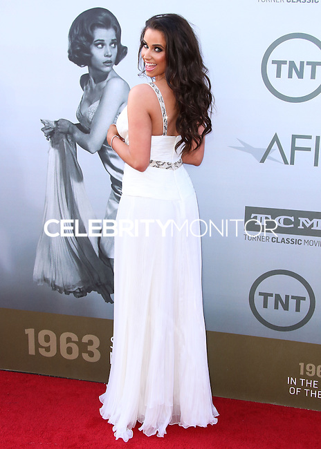 HOLLYWOOD, LOS ANGELES, CA, USA - JUNE 05: Syd Wilder at the 42nd AFI Life Achievement Award Honoring Jane Fonda held at the Dolby Theatre on June 5, 2014 in Hollywood, Los Angeles, California, United States. (Photo by Xavier Collin/Celebrity Monitor)