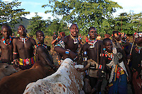 In the village of Bori, in the land of the Banas, during the initiation of the young Aïke, the mazas, freshly initiated, have the job of holding the animals that the initiate must jump over. ///Village de Bori, pays Bana pendant l'initiation du jeune Aïké, les mazas, initiés de fraiche date ont pour rôle de retenir les bêtes que l'initié doit franchir.