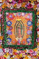 Guadalupe appears framed in flowers in a gift shop window in Rancho de Taos, New Mexico