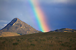 A vivid rainbow near Haystack Bute on the east front of the Rocky Mountains in Montana