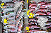 Red snappers are seen for sale at the seafood and fish market in Veracruz, Mexico, 29 June 2015.