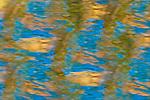 Stony Creek Abstract 2