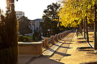 Coming from the upper section of the park, this is the view of the parterre at the Retiro park in madrid, spain