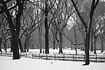 Central Park in New York City with snow. After a snow storm in Central Park.