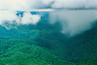 Aerial of tropical rainstorm showing rainshaft at base of cumulonimbus cloud over rainforest in Guiana Highlands, Amazonas State, Venezuela.