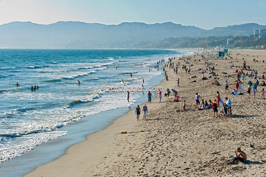Santa Monica beach, Santa Monica Pier, Pacific Park, California, United States of America, North America Santa Monica CA, Beach, Activities, People, Swimming,