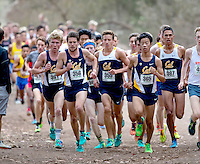 Cal Cross Country
