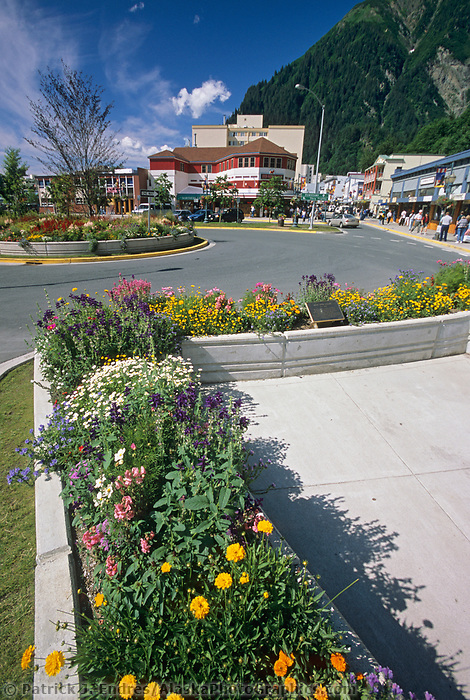 Summer flowers grow along the streets of downtown Juneau, southeast, Alaska.