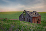 Idaho, North Central, Latah County, Moscow. Pre-dawn light and a rustic barn on the Idaho Palouse.