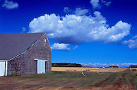 Barn with Clouds, Jamesport, NY: 2005, archival pigment print face-mounted to plexiglass,  27x40 edition of 12  $1000