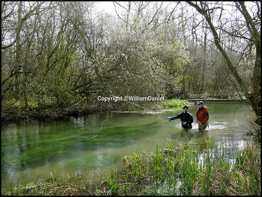 BNPS.co.uk (01202 558833)<br /> Pic: WilliamDaniel/BNPS<br /> <br /> The River Lambourn - One of the finest chalk trout streams in Britain.<br /> <br /> There was outrage today after environment bosses gave the green light for sewerage to be pumped into one of the most revered fly fishing rivers in Britain.<br /> <br /> The picturesque River Lambourn in Berkshire has long been a favourite among fishermen, treasured for its crystal clear waters that provide a home to large stocks of wild brown trout and the highly prized grayling.<br /> <br /> But campaigners say the 16-mile river and its inhabitants are now under threat after Environment Agency officials granted developers a permit to discharge effluence from a new luxury housing complex being built on its banks.<br /> <br /> It was thought that waste from the cluster of 10 plush homes at Weston, around seven miles north east of Newbury, would be routed into the main sewer network and stripped of any harmful phosphates.<br /> <br /> However developers Clean Slate said it would cost too much to do and instead proposed to discharge seven cubic metres of 'secondary treated sewage' - in which phosphates are still present - into the river each day.