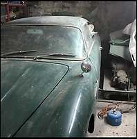 BNPS.co.uk (01202 558833)<br /> Pic; ECA/BNPS<br /> <br /> This dilapidated Aston Martin car has rusted away in a barn for 25 years but it is still expected to sell for more than a brand new version.<br /> <br /> Despite being its decaying conditiob, the 1966 DB6 is estimated to fetch a whopping &pound;220,000 - &pound;65,000 more than a 2017 DB11. <br /> <br /> Potential buyers are expected to be excited by the fact it is an untouched classic car and bears all of its original parts, meaning when fully restored, it is likely to be worth in excess of &pound;300,000. <br /> <br /> The car is being sold by Essex Classic Car Auctions.