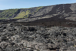 Hawai'i Volcanoes National Park, Big Island of Hawaii, Hawaii; looking up at the 1972 lava flow from the side of the Chain of Craters Road as you climb back uphill from the Pacific Ocean