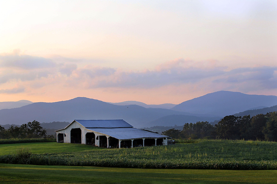 A farm with mountain views in Greene County, VA. Photo/Andrew Shurtleff