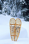 A pair of snow shoes sits in a deep snow drift at Lolo Pass Recreation Area
