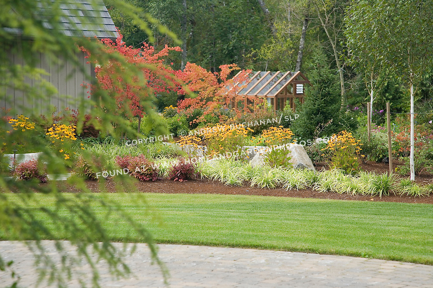 A mixed border of ornamental grasses, black-eyed susans, and Japanese maples separates the driveway from the greenhouse area.
