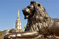 Lion statue with St Martins in the field Trafalgar Square London
