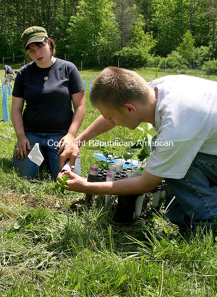 FALLS VILLAGE , CT.- 22 MAY 2009-052209DA03-New England Regional Science Coordinator for The American Chestnut Foundation, Kendra Gurney, left watches over member of The Housatonic Regional High School's Agricultural Science and Technology program, Leo Gustafson as he plants a seedling in hopes of bringing the blight tree back.  The project that was held at Ellery &quot;Woods&quot; Sinclair, orchard on Under Mountain Road in Falls Village Friday. <br />  Darlene Douty Republican-American