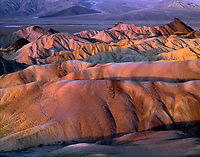 CADDV 010 -   Sunrise light on eroded mudstone which forms undulating hills, view west from Zabriskie Point, Death Valley National Park, California, USA