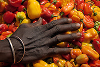 Hard working hand touching peppers in African market