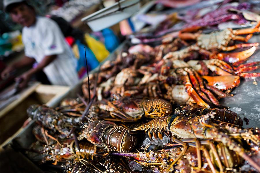 Seafood fish market in Panama City, Panama | Jan Sochor Photography Archive