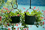 Flowers hanging in old cast iron pots in the Italian town of Castello, a town built on the remains of an old castle on the hills surrounding Lake Lugano. Flowers hanging in old cast iron pots are a common sight in Italy and Switzerland