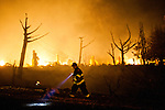 SAN BRUNO, CA - SEPTEMBER 9: A firefighter walks through the scene of a fire September 9, 2010 in a San Bruno, California residential street. A massive explosion rocked a neighborhood near San Francisco International Airport.