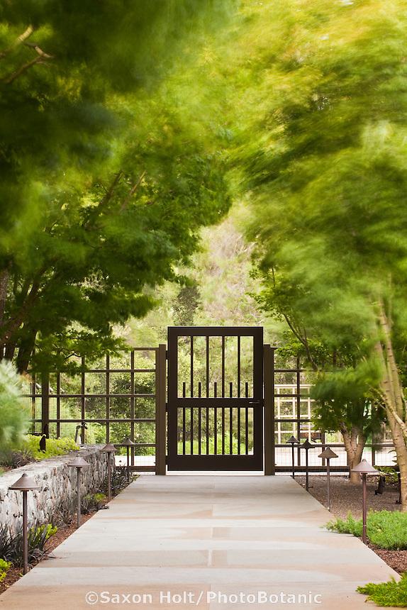 Entry garden gate and flagstone walkway under windy trees; Robyn Sherrill design