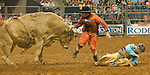 Bull fighter Dusty Tuckness gets between the bull and bull rider Stormy Wing after Wing got his hand caught and had trouble releasing from his bull in the bull riding event at the Houston Livestock Show and Rodeo.  (Wednesday, March 18, 2009, in Houston. ( Steve Campbell / Houston Chronicle)