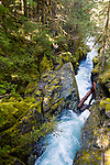 Opal Creek Trail in the foothills of the Cascade Range, Oregon