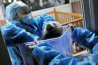Nurses and doctors tend to pandas at the Chengdu Giant Panda Breeding and Research Base in Chengdu, China. Dec 2009...