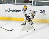 The University of Michigan ice hockey team beat Bowling Green State University, 3-1, at Yost Ice Arena in Ann Arbor, Mich., on November 21, 2012.