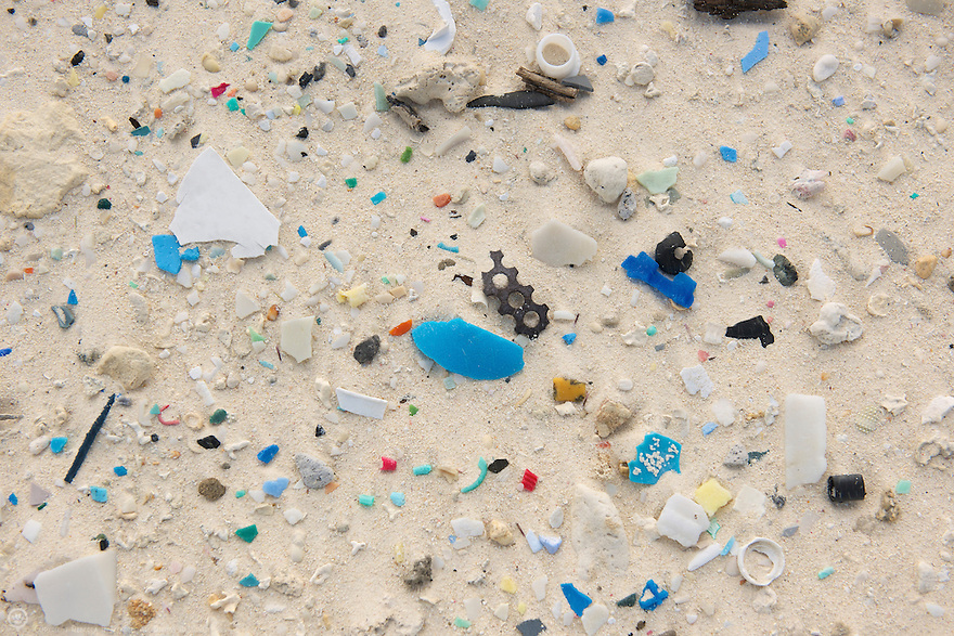 Bits of broken down plastic products litter the remote beaches of Midway Atoll.  At our current rate of consumption and improper disposal is it possible that all of our beaches will be this colorful in the future?
