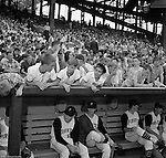 Pittsburgh PA: View of Pirate players and fans before the start of the HYPO Charity game between the Pittsburgh Pirates and Milwaukee Braves at Forbes Field.<br />