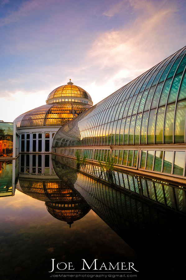 Marjorie McNeely Conservatory  at Como Park in St. Paul, Minnesota was first opened in 1915.