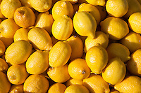 Lemons on sale at food market in Bordeaux region of France