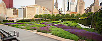 Panorama view of Lurie Garden at Millenium Park, with city of Chicago skyline, rooftop garden over parking garage.