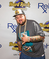 Pawn Stars' Chumlee Avoids Jail With 3 Year Plea Deal