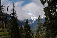 Mt. Rainier in the clouds - Mt. Rainier National Park, WA