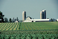 Large farm with barns and silos in Iowa growing soybeans and corn, USA