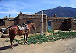 horse at Taos Pueblo
