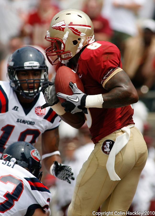 TALLAHASSEE, FL 9/4/10-FSU-SAMFORD FB10 CH-Florida State's Taiwan Easterling pulls in a touchdown pass against Samford during first half action Saturday at Doak Campbell Stadium in Tallahassee. The Seminoles beat the Bulldogs 59-6 to give Head Coach Jimbo Fisher his first victory..COLIN HACKLEY PHOTO