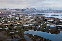 Iceland; Myvatn; Thingeyjarsyslur