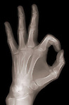 X-ray image of OK hand gesture (color on black) by Jim Wehtje, specialist in x-ray art and design images.