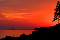 Sunset Silhouette  #S5