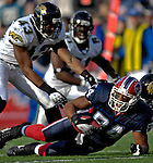 26 November 2006: Buffalo Bills tight end Robert Royal (84) recovers a fumble against the Jacksonville Jaguars at Ralph Wilson Stadium in Orchard Park, NY. The Bills defeated the Jaguars 27-24. Mandatory Photo Credit: Ed Wolfstein Photo<br />