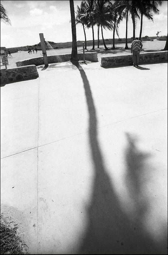 Lummus Park<br /> From &quot;Miami in Black and White&quot; series. Miami Beach, 2010